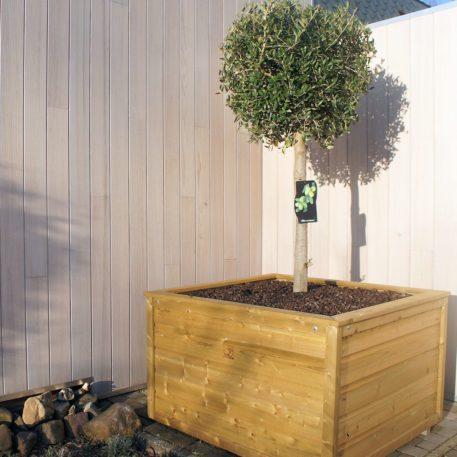 Vul je plantenbak 10010065 met gewenste planten