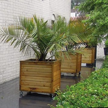 Plantenbak Vierkant 100x100x95